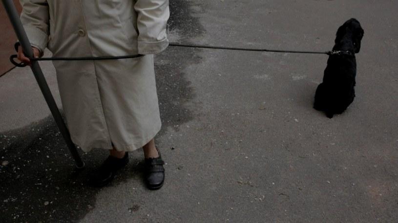 """Akcja """"Pozdrawiam"""" Tatiany Chistowej i Macieja Hameli rozgrywa się Petersburgu /materiały prasowe"""