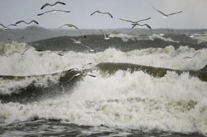 Akcja ratunkowa na Bałtyku. Żeglarz utknął na morzu