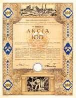 Akcja Sierszańskich Zakładów Górniczych S.A. na kwotę 100 zł, emitowana w Sierszy 18 V 1929 r. /Encyklopedia Internautica
