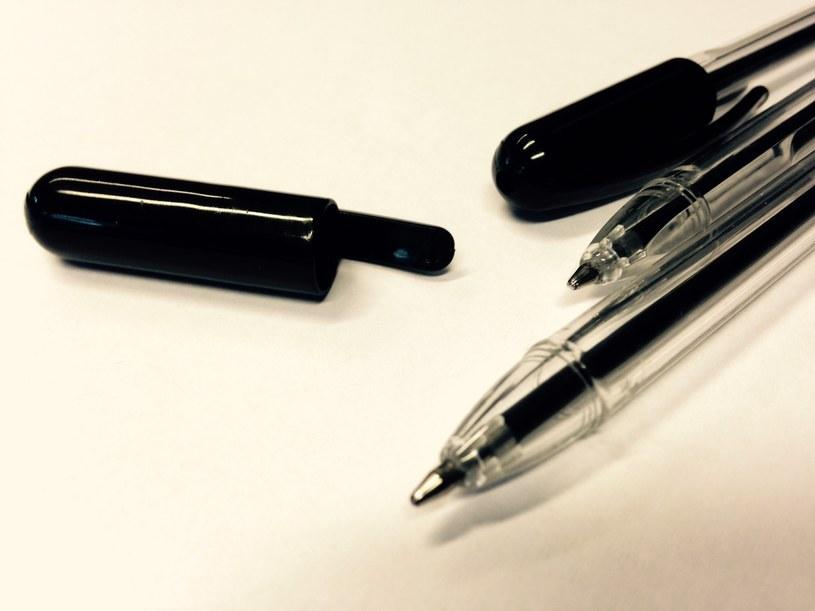 """Akcja """"Weź swój długopis na wybory"""" z godziny na godzinę zyskuje nowych zwolenników, zdj. ilustracyjne /INTERIA.PL"""