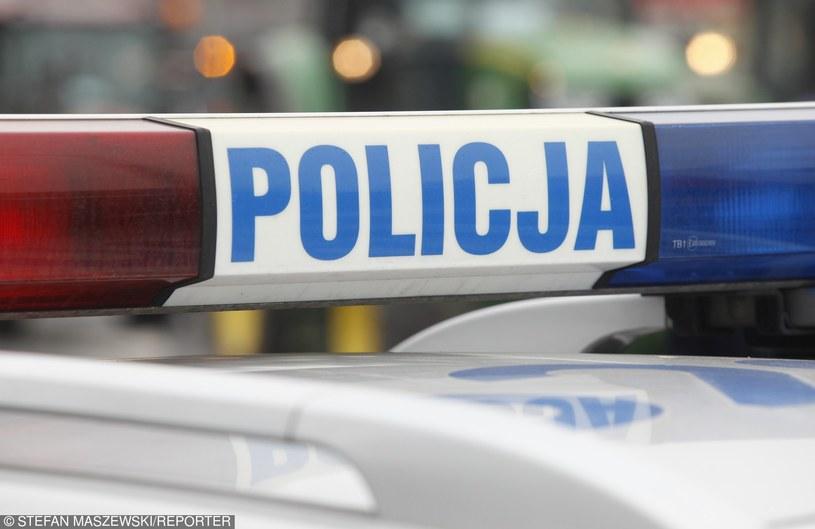 Akcja została przeprowadzona przez małopolską policję / Zdj. ilustracyjne /Maszewski /Reporter