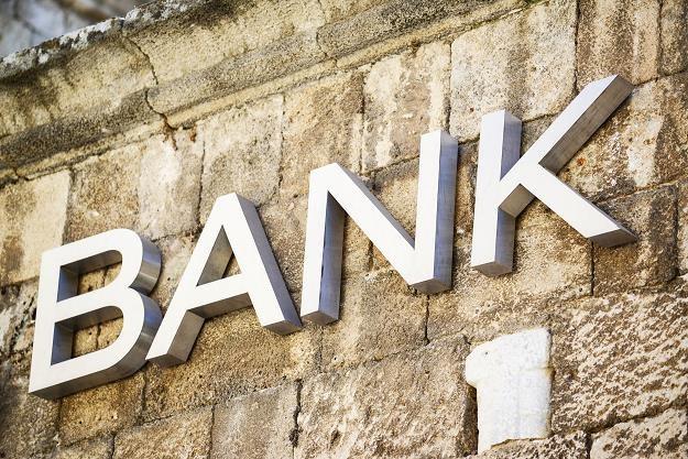 Akcjonariusze banków w 2013 r. zarobili 7,5 mld złotych /©123RF/PICSEL