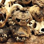 Akodessewa - targowisko rodem z horrorów