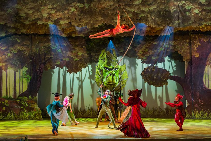 Akrobacje Tarzana w zaczarowanym lesie /materiały prasowe
