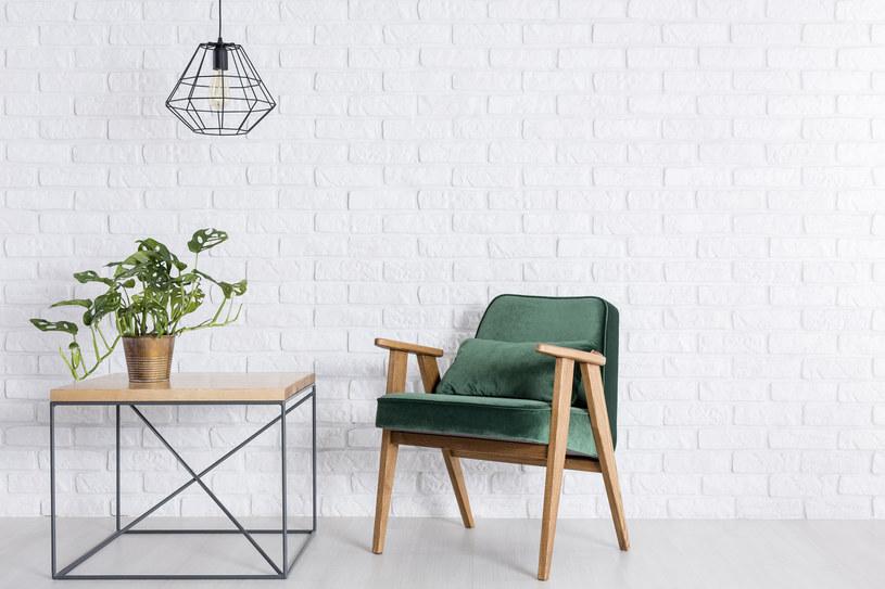 Aksamit dobrze wygląda na prostej poduszce lub obszernym fotelu w dawnym stylu /123RF/PICSEL