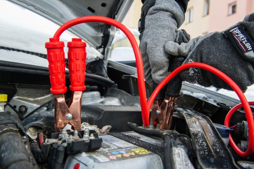 Akumulatory umierają zimą... /Tadeusz Koniarz /East News