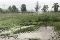 Alarmy i pogotowia przeciwpowodziowe. Trudna sytuacja w Śląskiem [ZDJĘCIA]