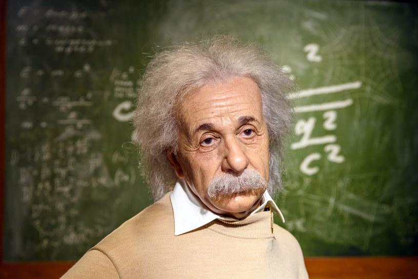 Albert Einstein /123RF/PICSEL