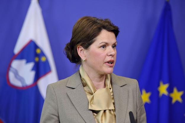 Alenka Bratušek, premier Słowenii /AFP