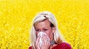 Alergia - jak z nią żyć?