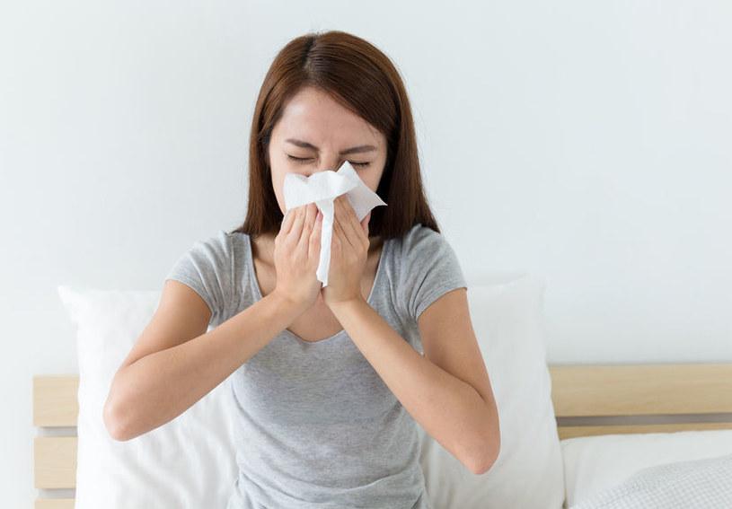 Alergia na kurz /©123RF/PICSEL