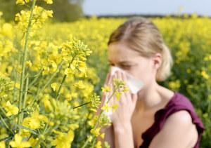 Alergia na pyłki. Objawy, kalendarz pylenia roślin i porady dla alergików