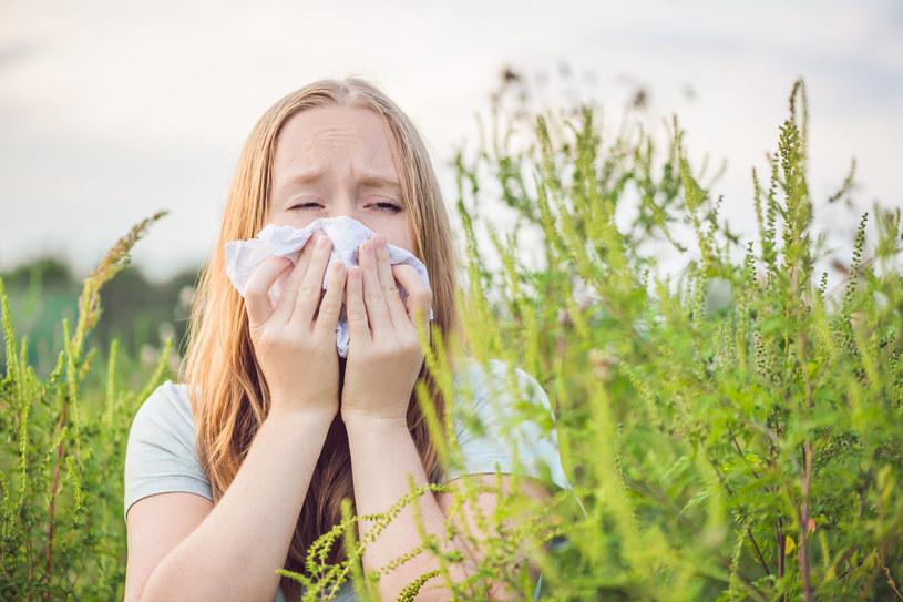Alergia nie jest stanem normalnym i należy ją leczyć /123RF/PICSEL