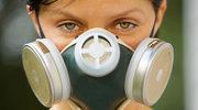 Alergia – przypadłość XXI wieku