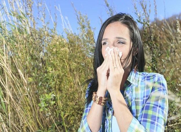 Alergia sezonowa może mieć swoje źródło w braku odporności /123RF/PICSEL