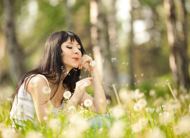 Alergie na pyłki leczy się lekami przeciwhistaminowymi na receptę /123RF/PICSEL