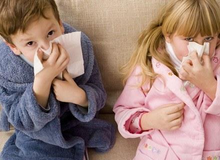 Alergię wziewną mogą powodować rozmaite substancje