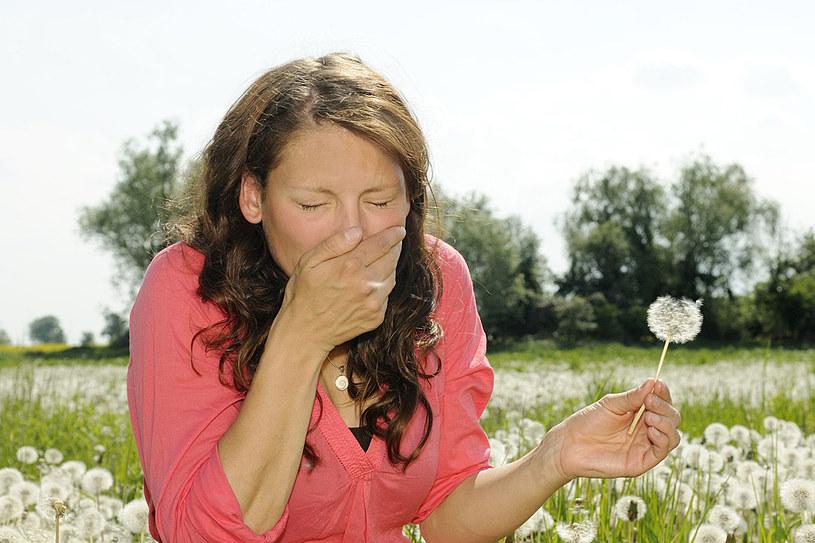 Alergolodzy alarmują, że postępujące z roku na rok globalne ocieplenie pogarsza stan osób nadwrażliwych na pyłki roślinne /123RF/PICSEL