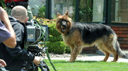 Alex dostał własną kamerę!