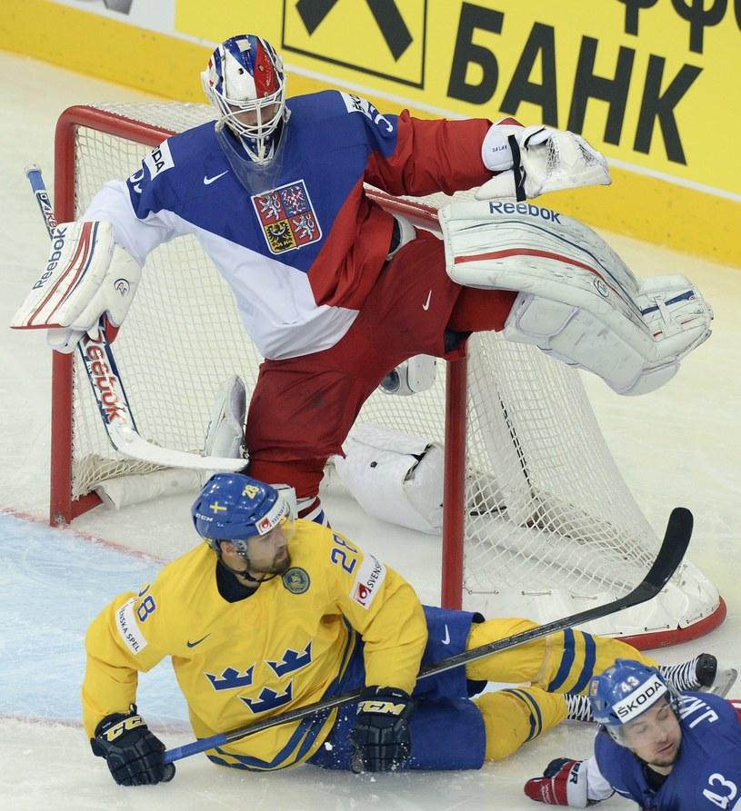 Alexander Salak w bramce reprezentacji Czech /AFP