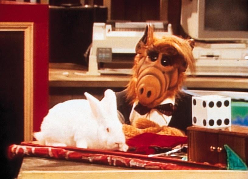 Alf nigdy się nudził /Bauer /AKPA