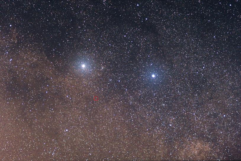 Alfa Centauri po lewej, Proxima zaznaczona czerwonym kółkiem, beta Centauri po prawej. Fot. Wikipedia /Wikipedia