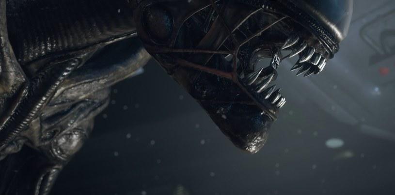 Alien /materiały prasowe
