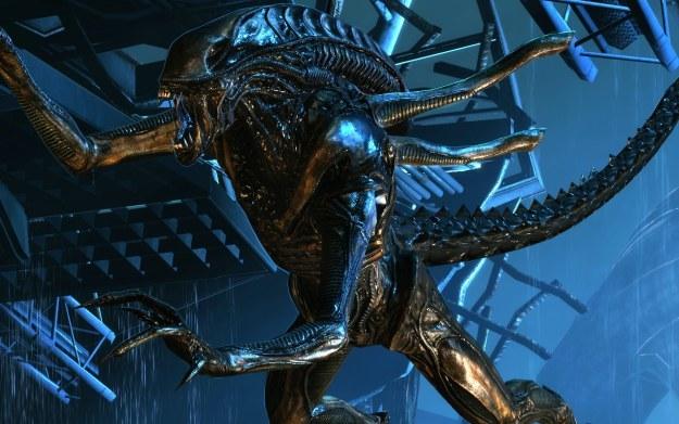 Aliens /materiały prasowe