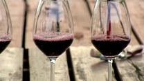 Alkohol wrogiem odchudzania. Sprawdź kaloryczność ulubionych trunków