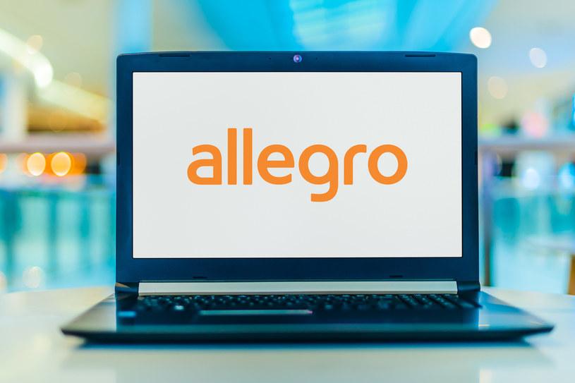 Allegro oferuje 16 mln zł wsparcia /123RF/PICSEL