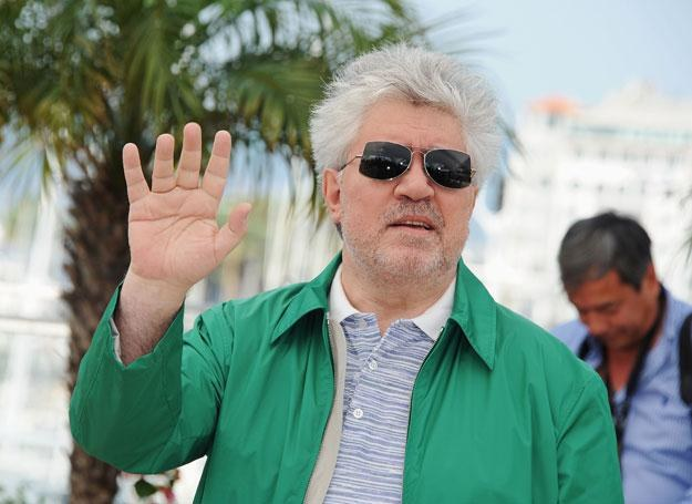 Almodovar to człowiek o wielu talentach /Getty Images/Flash Press Media
