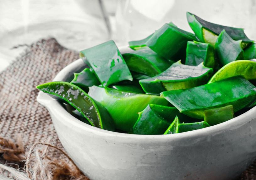 Aloes to skuteczny naturalny kosmetyk /123RF/PICSEL