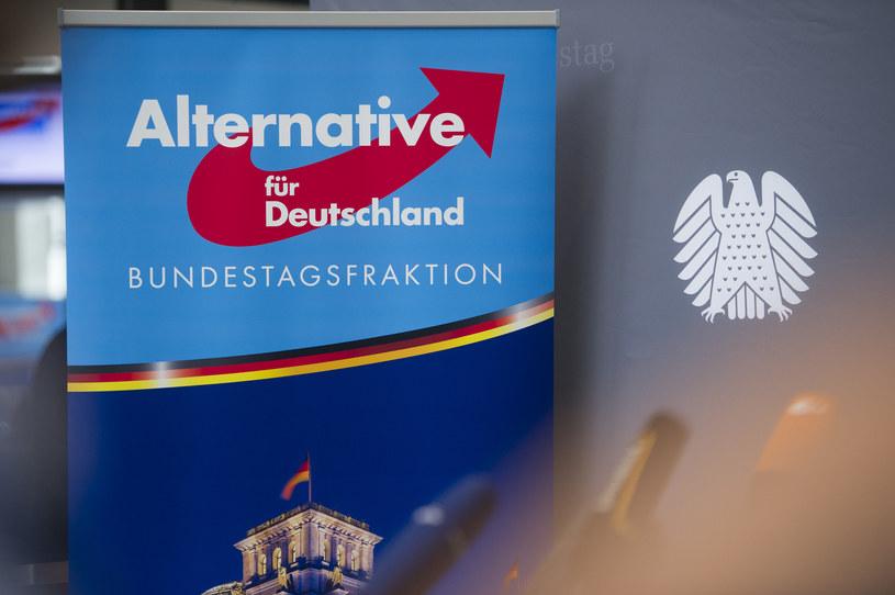 Alternative fur Deutschland - trzecia siła w Bundestagu /STEFFI LOOS /AFP