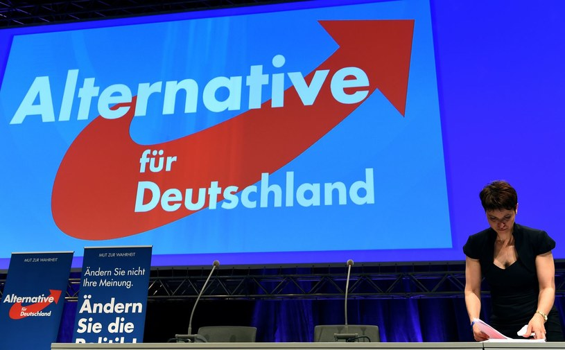 Alternatywę dla Niemiec (AfD) poparło 13 proc. uczestników sondażu /AFP