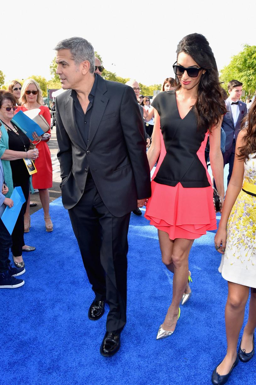 Amal Clooney jest za chuda? /Alberto E. Rodriguez /Getty Images