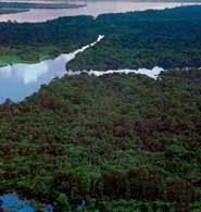 Amazonka w środkowym biegu, Kolumbia /Encyklopedia Internautica