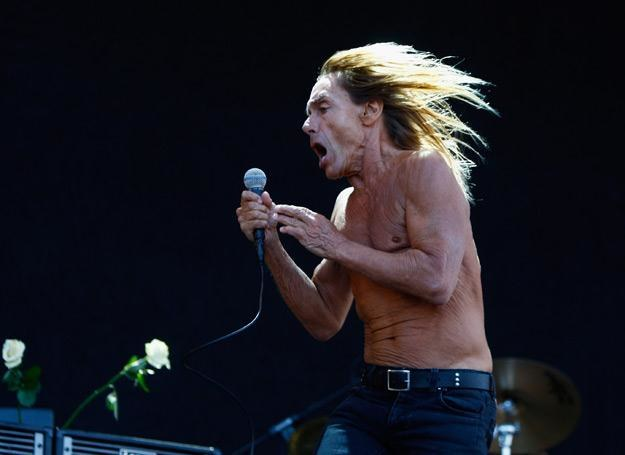 Ambasadorem akcji został Iggy Pop - fot. Simone Joyner /Getty Images/Flash Press Media