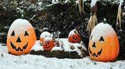 Amerykanie obchodzą Halloween