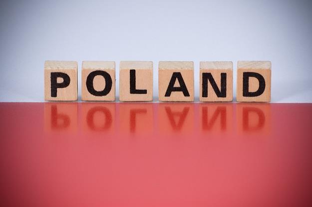 Amerykanie podnieśli prognozę dla polskiej gospodarki /©123RF/PICSEL