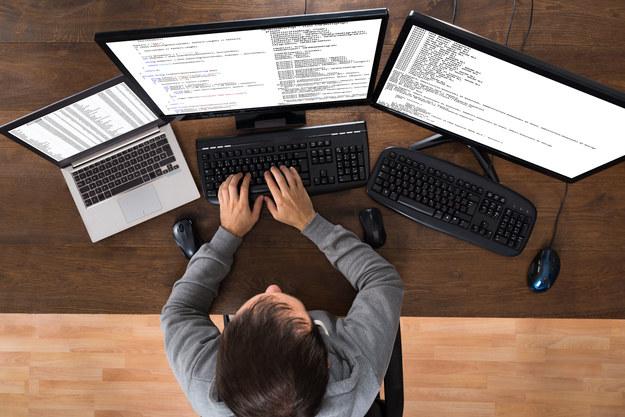 Amerykańska firma z branży IT planuje zatrudnić ok. 500 osób /123RF/PICSEL