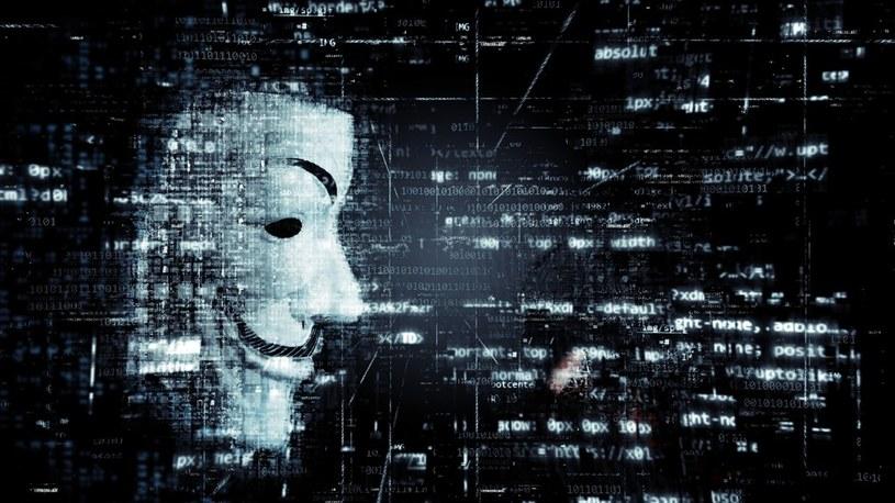 Amerykański rząd chce walczyć z cyberprzestępczością razem z gigantami technologicznymi /Geekweek