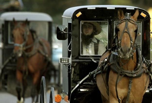 Amisze w drodze na pogrzeb dzieci zastrzelonych w Nickel Mines /AFP