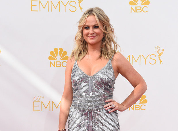 Amy Poehler /Getty Images