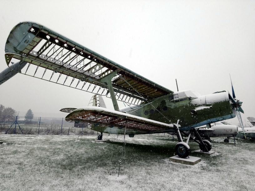 An-2 na ekspozycji Muzeum Sił Powietrznych, doskonale widoczna konstrukcja skrzydeł /fot. Łukasz Pieniążek /materiały prasowe