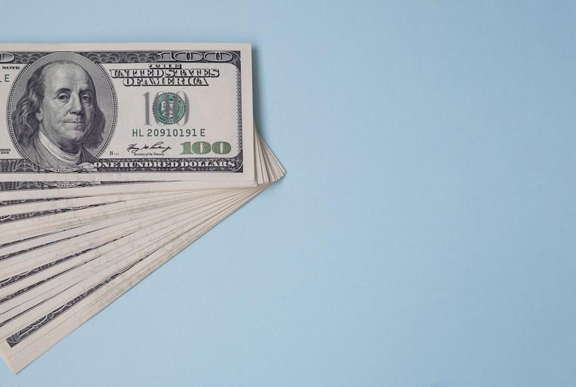 Analitycy, którzy wieszczyli osłabienie dolara, srogo się pomylili /123RF/PICSEL
