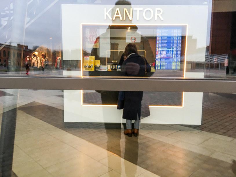 Analitycy: Na koniec roku kursy walut mogą spaść o 20-30 groszy /Piotr Kamionka /Reporter
