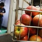 Analiza cen: Ceny jabłek poszły w górę o ponad 46 proc. Banany zaliczają spadek