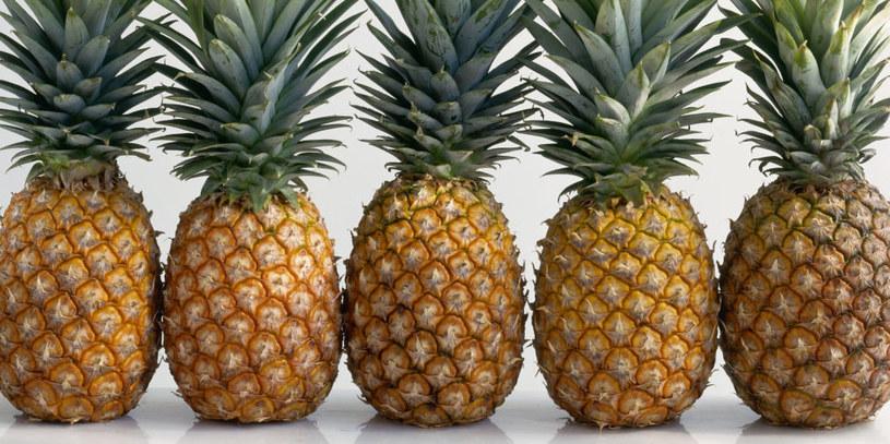 ananas właściwości /© Photogenica