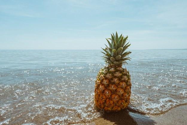 Ananasy można wwozić do UE do woli! /foto. pixabay /