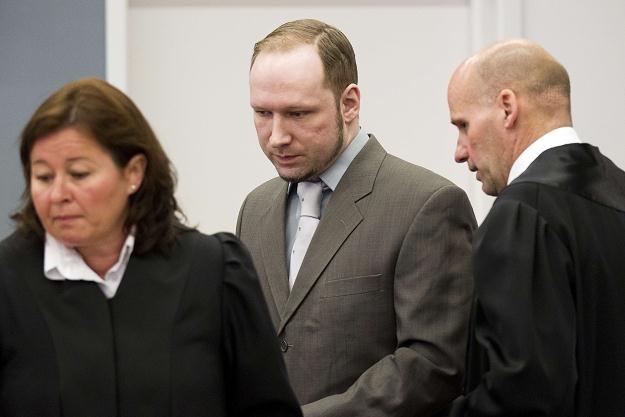 Anders Breivik w sądzie /AFP